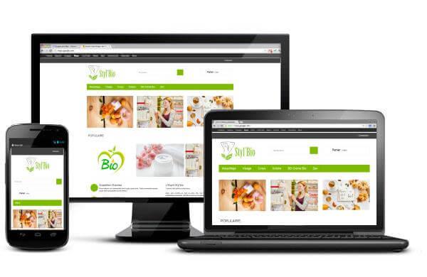 Capture d'écran du site Stylbio